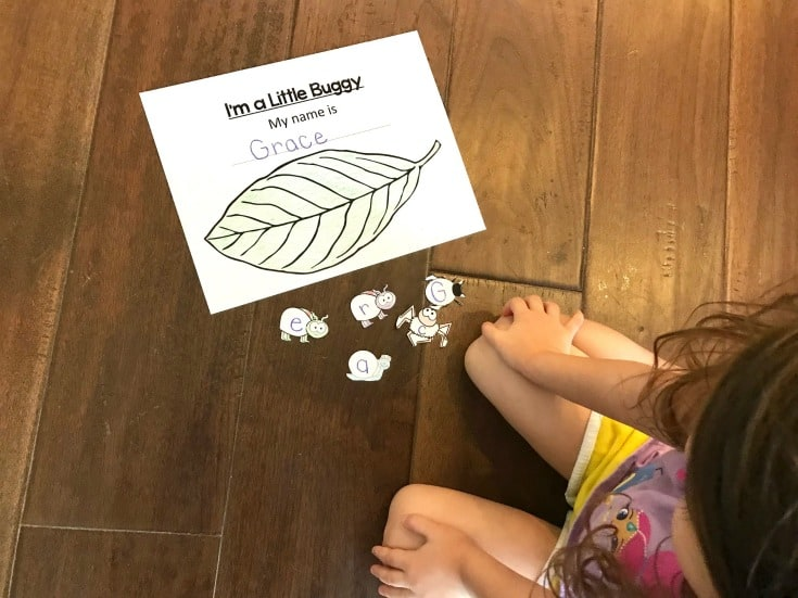 The more name recognition activities you can do with your preschoolers the better. This insect-themed name recognition activity is perfect for spring and summer!