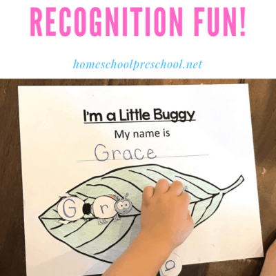 Bug-Themed Name Recognition Activity