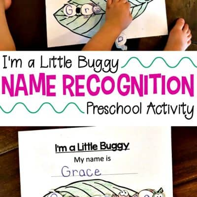 Insect-Themed Summer Name Recognition Activity