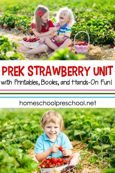 Fun Activities for a Strawberry Preschool Unit Study