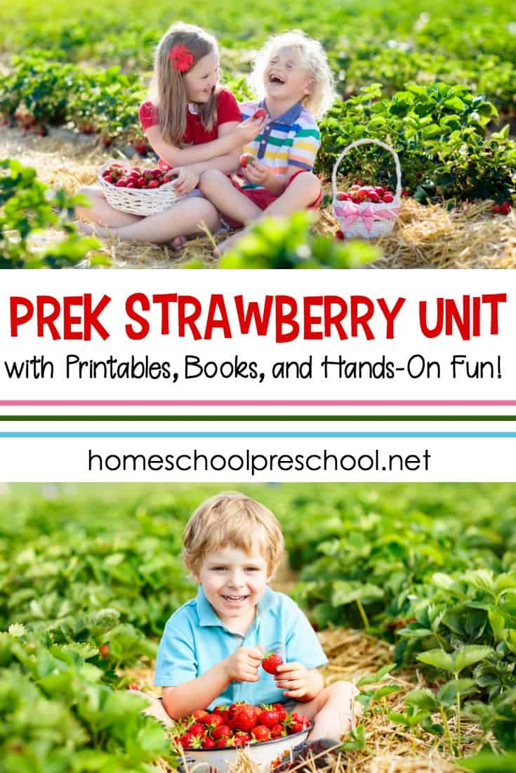 What an amazing collection of activities you can use to build a strawberry preschool unit study! You'll find everything you need to get started...