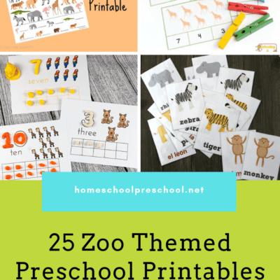25 Engaging Preschool Zoo Printables