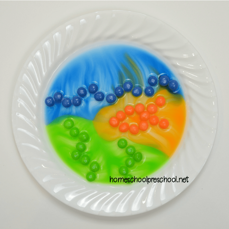 Summer science at its finest! You don't want to miss this ocean-themed Skittles candy science experiment. Your kids will beg to do it again and again.