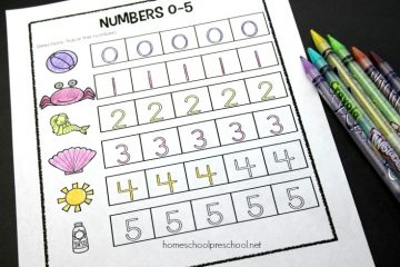 This set of 0-5 preschool number worksheets will help young learners focus on counting, number recognition, number sense, and more.