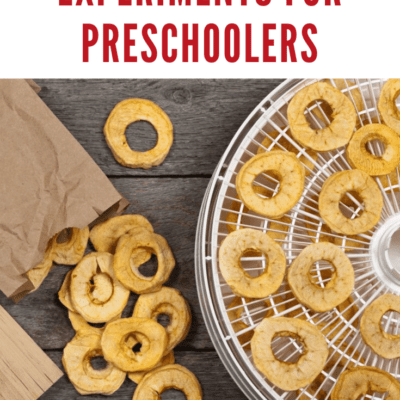 Apple Science Activities for Preschoolers