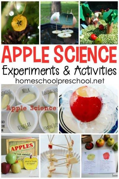 20+ Science Activities for Your Apples Preschool Theme