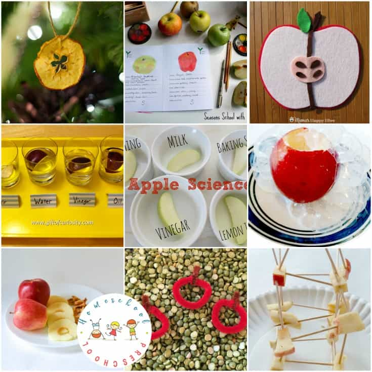 It's time to gear up for back to school. Add one or more of these science activities to your apples preschool theme. The kids will love it!