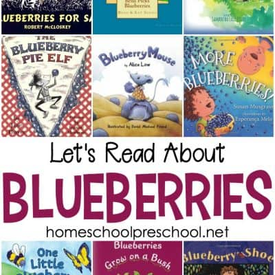 9 Best Blueberry Picture Books for Your Book Basket
