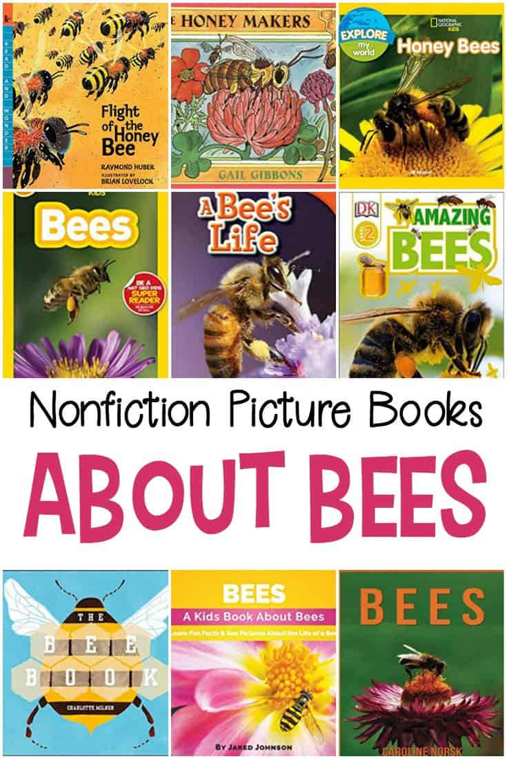Preschoolers are sponges ready to soak up new things all the time. So, teach them about bees with these nonfiction picture books about bees.