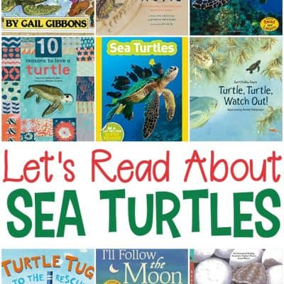 Sea Turtle Books for Kids