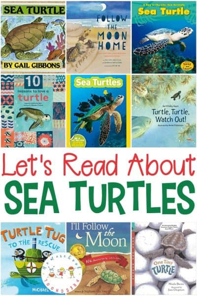 Sea turtles are amazing creatures. These fiction and nonfiction sea turtle books will introduce kids to these amazing sea creatures!