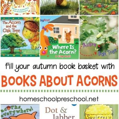 Acorn Books for Kids