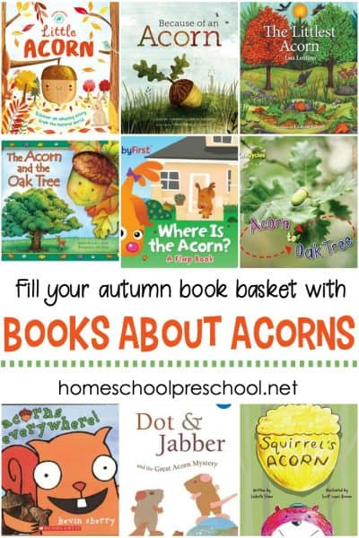 Teach your kids about acorns and oak trees this fall with this great collection of acorn books for kids. They're perfect for your fall book baskets.