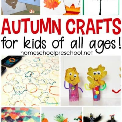 25+ Autumn Activities and Crafts for Preschoolers