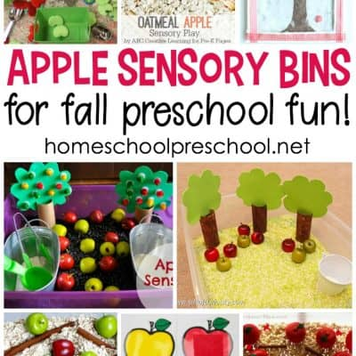 20 Apple Sensory Bin Ideas for Preschoolers