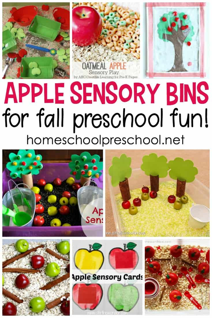 Wow! What a great collection of apple sensory bin ideas for preschoolers. They're perfect for your apples preschool theme.