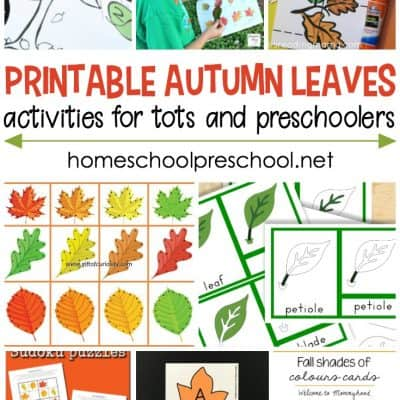 Autumn Leaves Activities for Toddlers and Preschoolers
