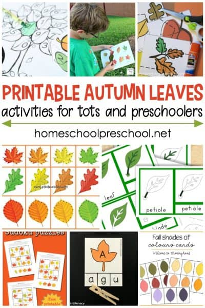 If the leaves are starting to change colors in your area, add one or more of these autumn leaves activities for toddlers and preschoolers to your lessons!