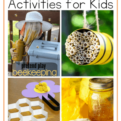 Exploring Bees for Kids