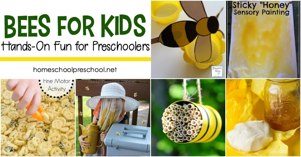 Engaging, hands-on activities exploring bees for kids! Kids will love learning about honey bees with these fun facts and hands-on activities.