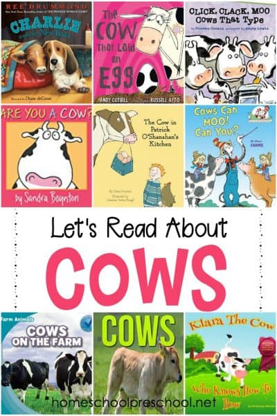 12 amusing cow books for preschool! Fill your book basket with these animal books for preschool and kindergarten readers.