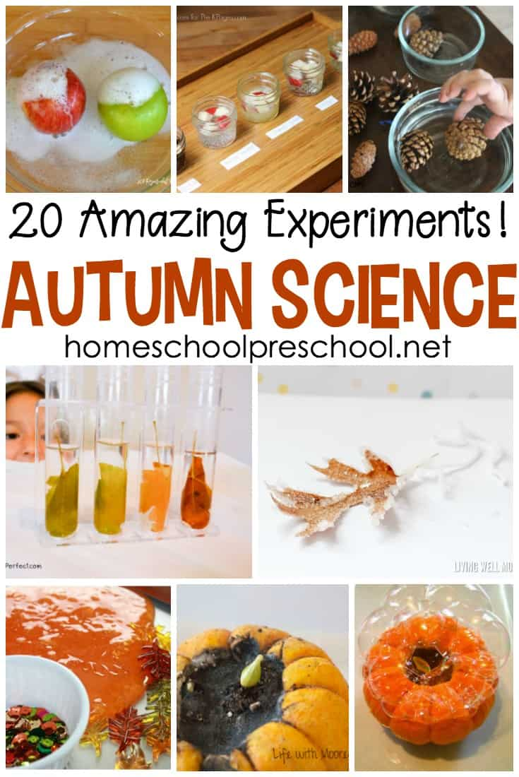 Pumpkins, apples, leaves, and more! Come discover 20 engaging fall fun science experiments for preschoolers!