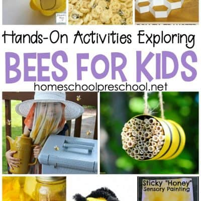 Engaging Hands-On Activities Exploring Bees for Kids