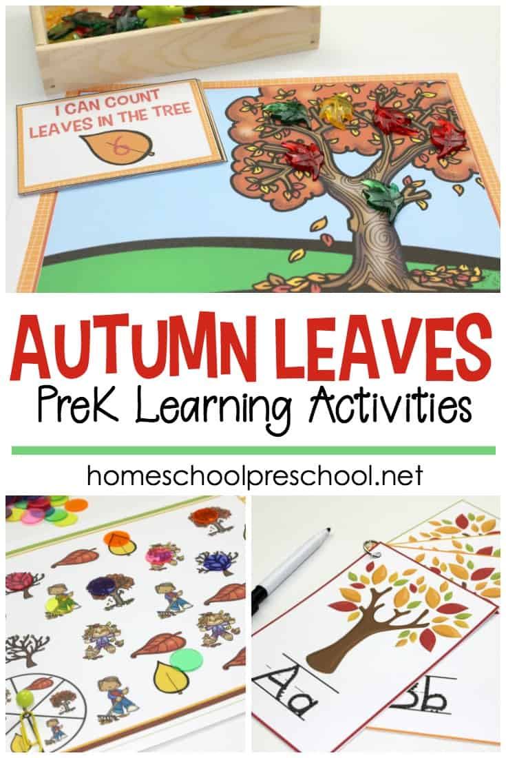 Your children will love these engaging preschool leaf theme math and literacy activities. Over 12 hands-on activities to choose from!