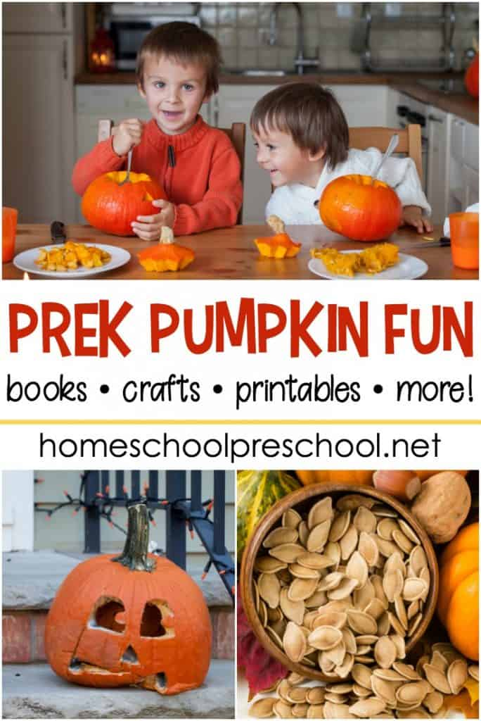 If you've got pumpkin on the brain this fall, you don't want to miss any of these activities that will make a great addition to your preschool pumpkin theme!