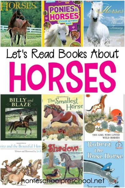 Have a horse crazy child in the house? One who begs for riding lessons or asks Santa for a pony every Christmas? These childrens horse books are for you!