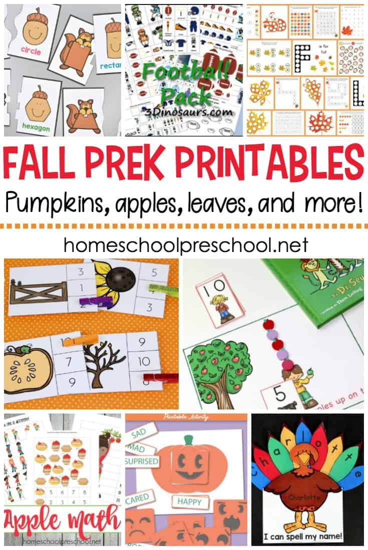 No matter what autumn themes you're planning for your preschoolers, these fall printables for preschool will help you round out your units!