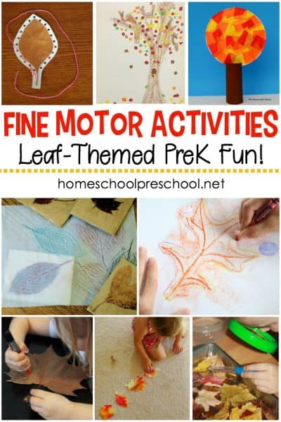 Autumn is just around the corner. Help preschoolers build motor skills with these leaf-themed fine motor activities that are perfect for fall!