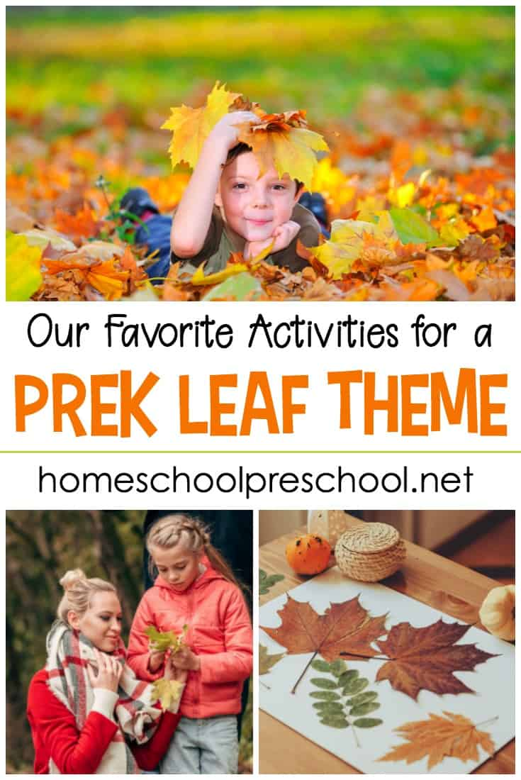 Fun leaf themed activities, resources, book lists, and printables to round-out your preschool leaf theme. Add these to your fall preschool themes.