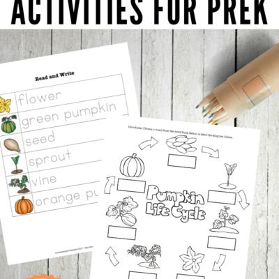 Preschool Life Cycle of a Pumpkin Printable