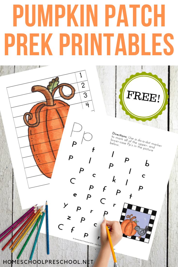 Fall is just around the corner. With it comes all things pumpkin! Share these pumpkin patch printable activities with your preschoolers!