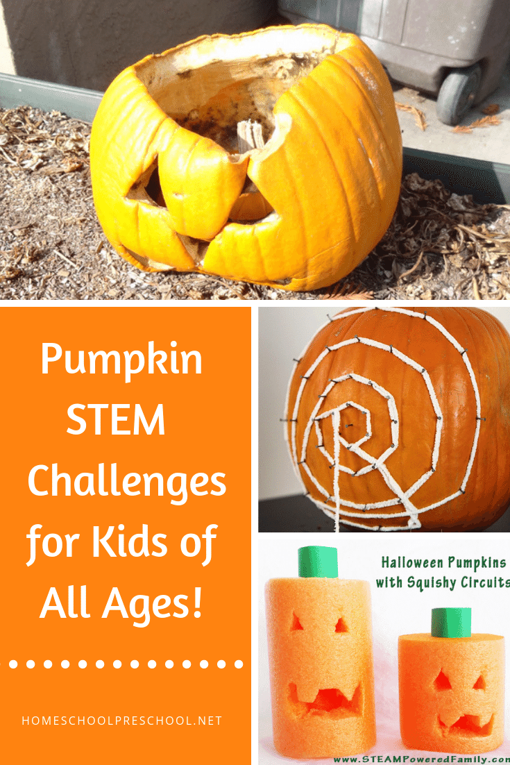 19 Of The Very Best Pumpkin Stem Activities For Kids