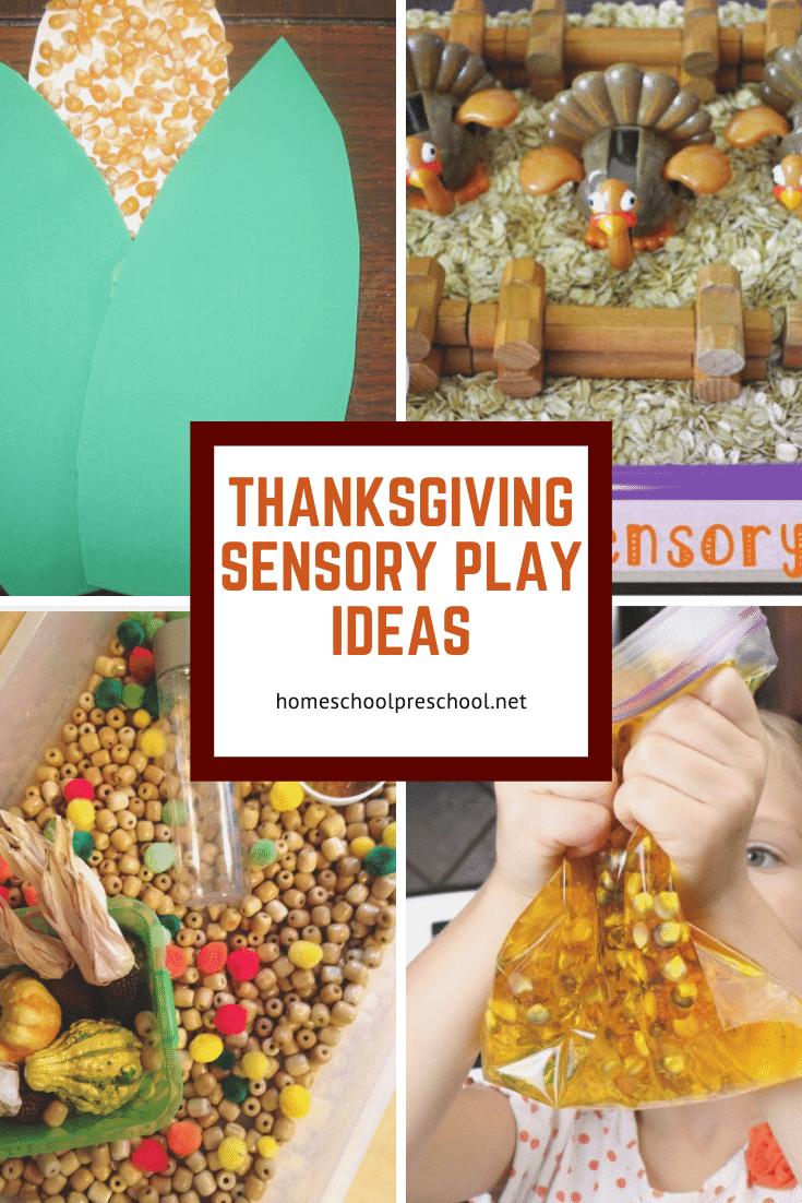 Explore sensory play with these Thanksgiving sensory activities for preschoolers! What a great way to entertain kids this holiday season.