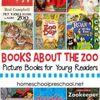 Picture Books About the Zoo