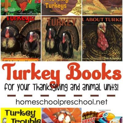 9 Terrific Turkey Books for Preschool