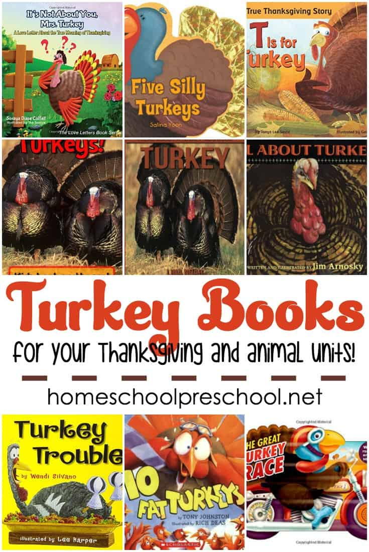 Are you looking for a few fun and fabulous turkey books for preschool? Then you have to check out these fantastic fiction and nonfiction turkey books!