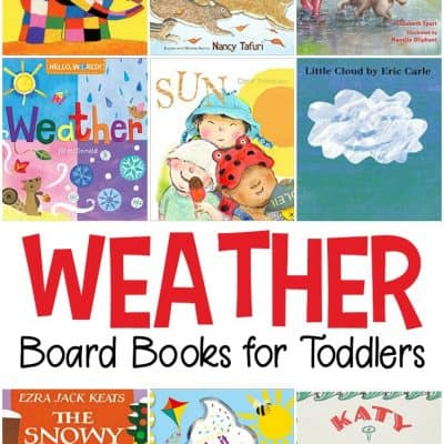 Weather Books for Toddlers