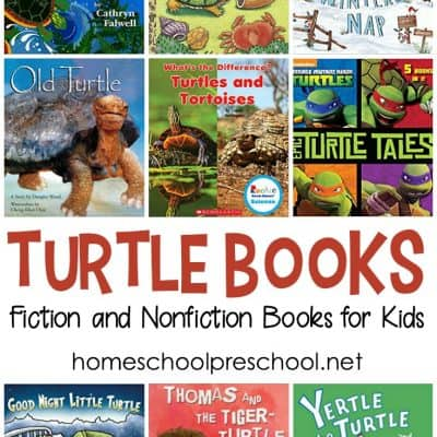 Our Favorite Turtle Books for Kids