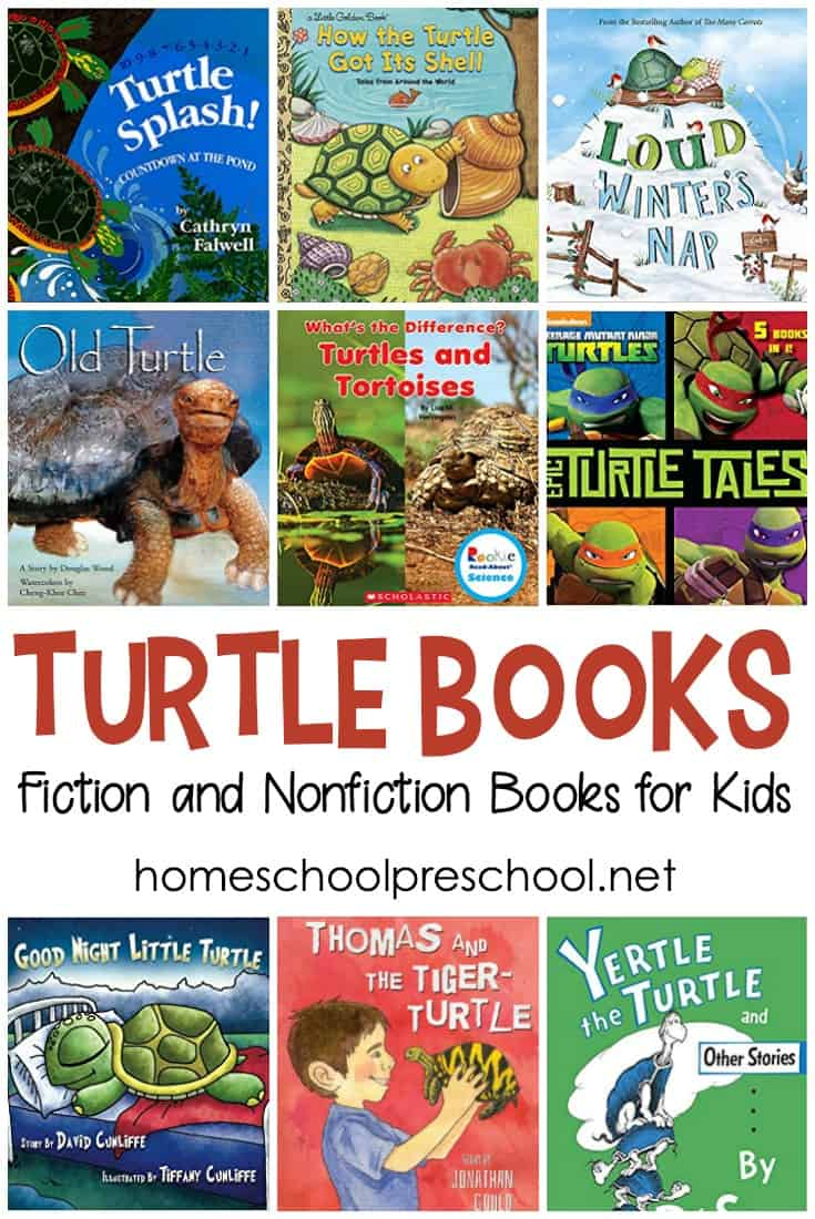What a great collection of turtle books for preschoolers and young readers. This list includes both fiction and nonfiction books to teach more about turtles.