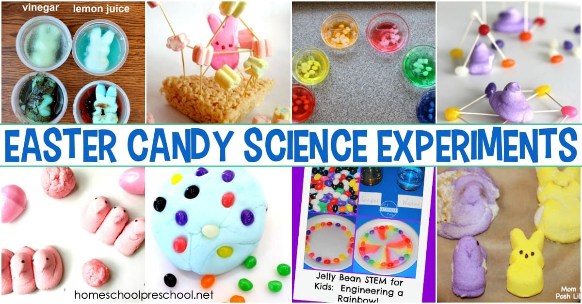 Engage your little ones with these amazing Easter candy science experiments! These activities feature Peeps, Skittles, jelly beans, and more!