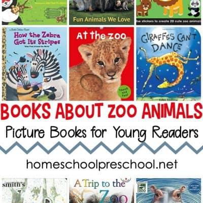 Preschool Books About Zoo Animals
