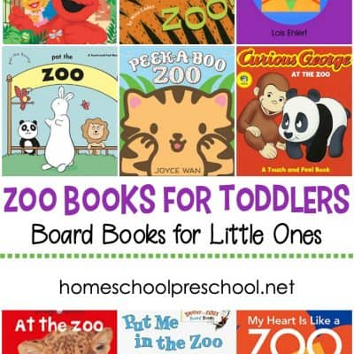 Zoo Books for Toddlers