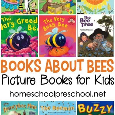Fiction Books About Bees
