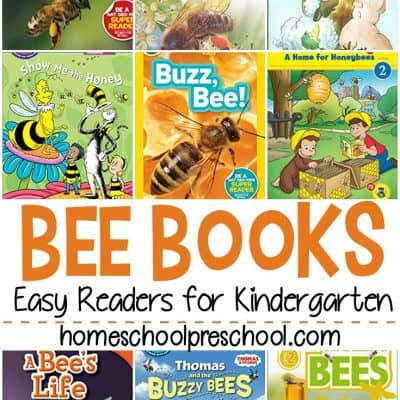 Bee Books for Kindergarten