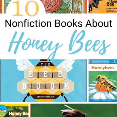 Nonfiction Books About Bees