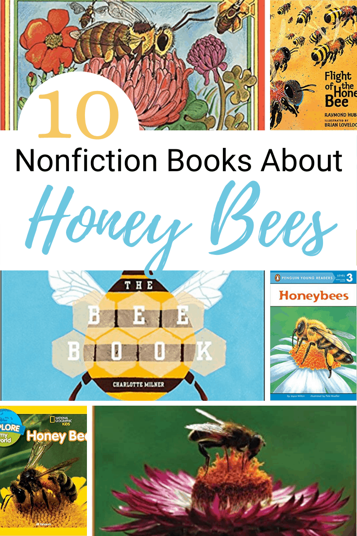 Preschoolers are sponges ready to soak up new things all the time. Teach them about bees with these nonfiction books about bees.